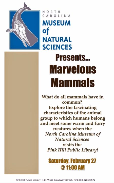 Marvelous Mammals